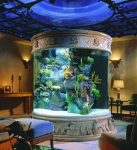 When you think about shapes for your aquarium, a cylindrical shape is not a bad idea in the center of a house