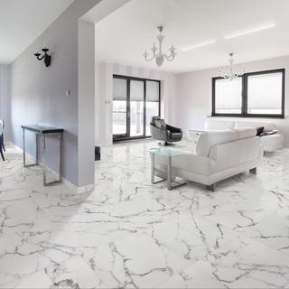 Black and white Monochrome streaks floor tile design