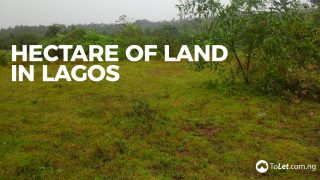 hectare of land in Lagos
