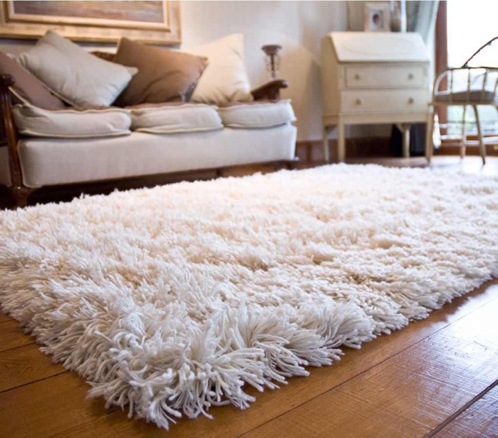 5 Tips For Choosing Area Rugs For Your Home Propertypro Insider
