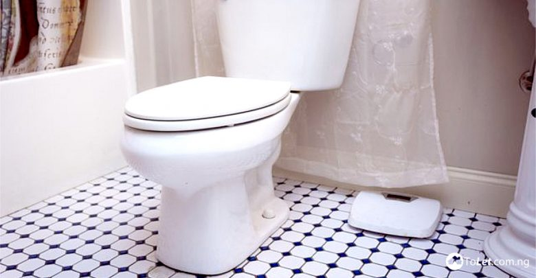 The Toilet Is No Doubt One Of Most Important Places In Any Type Building Be It A Business Or Residential Structure And Definitely Used