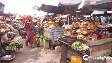 shopping in Lagos, palms mall, shoprite, balogun market, katangua market, computer village